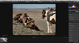 Luminar als Lightroom en Photoshop plug-in